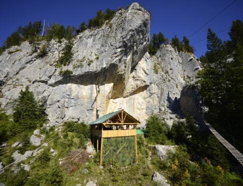Halbtägiges Klettersteigtraining Bad Goisern